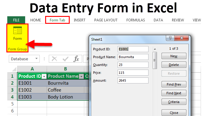 Data Entry Form in Excel 1